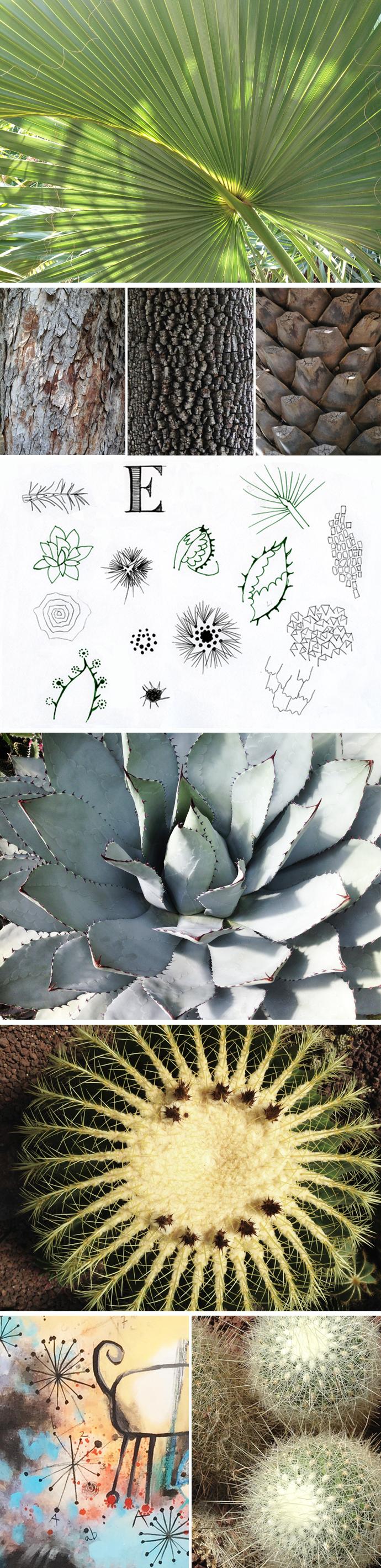 botanico-2