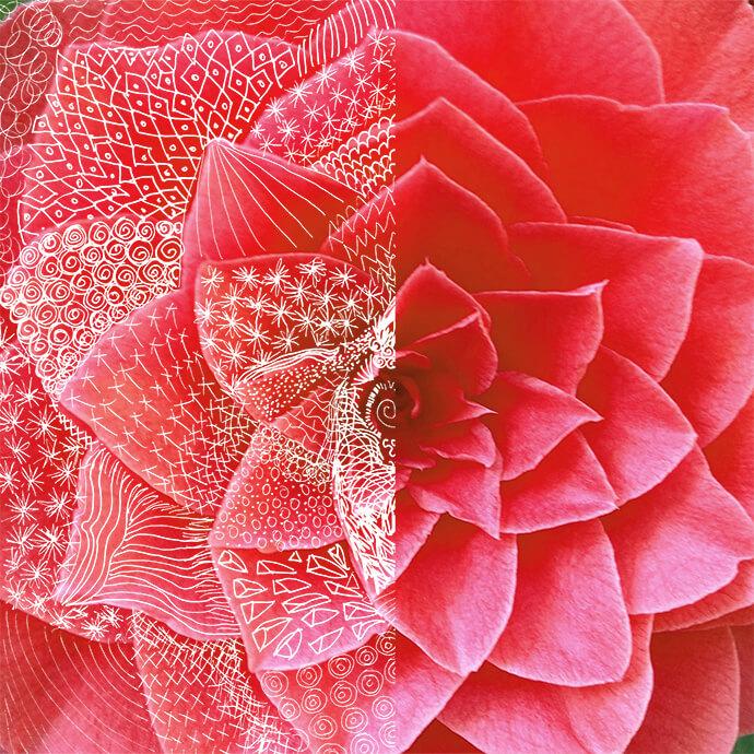 texturen, de onzichtbare sensatie